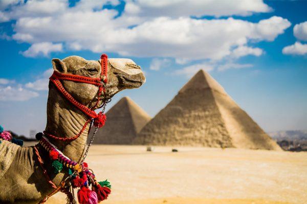 Egiptas 5* viešbutyje