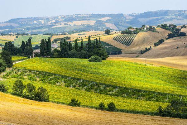 Italija/ Markė Senigalija